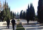 سعدیه/ عکس: محمدمهدی اسدزاده